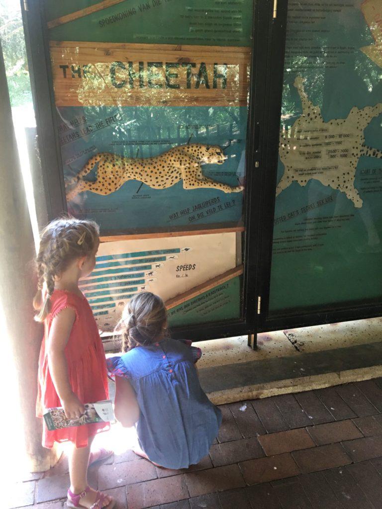 Zoo Johannesburg 17