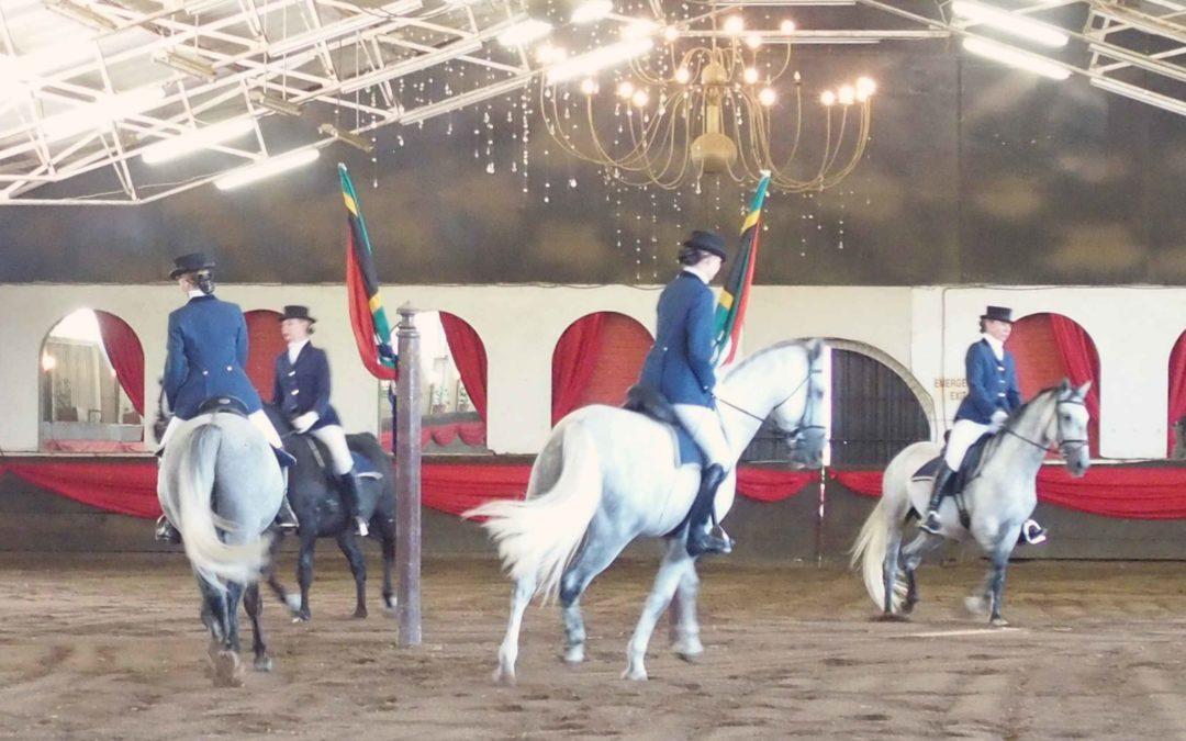 Le spectacle des chevaux Lipizzans