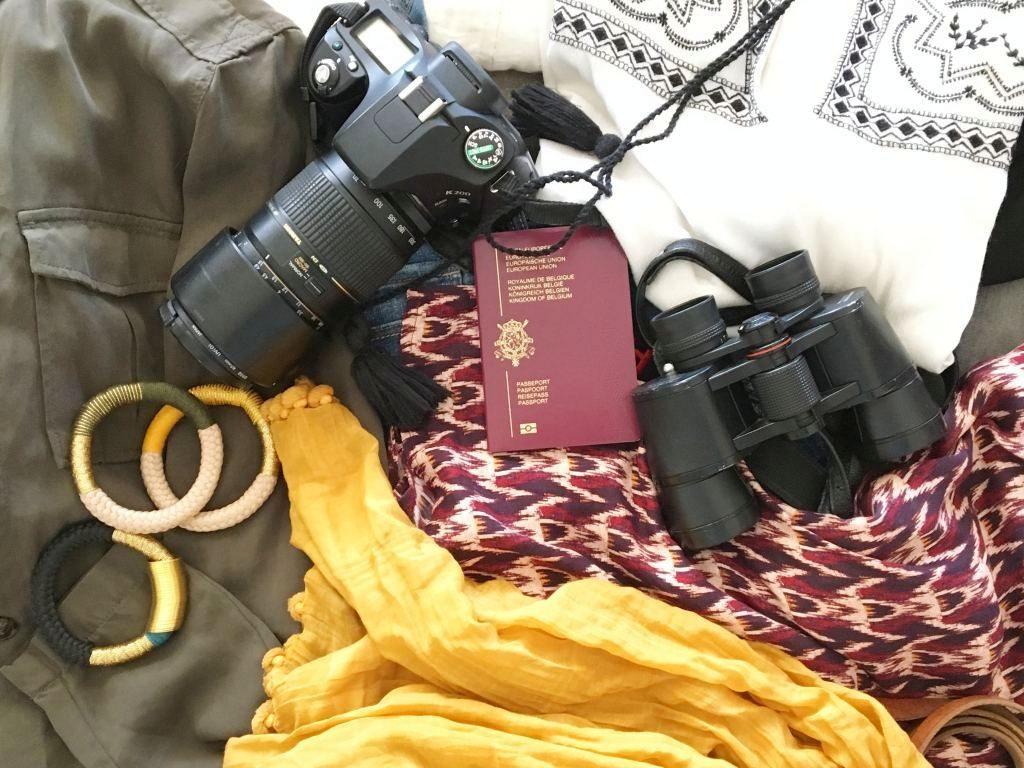 valise safari