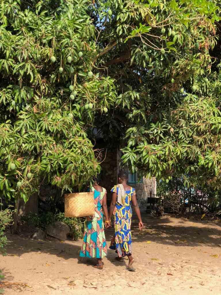 Voyage Zambie Malawi