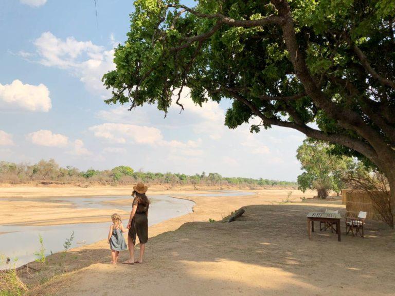 Zambie 10