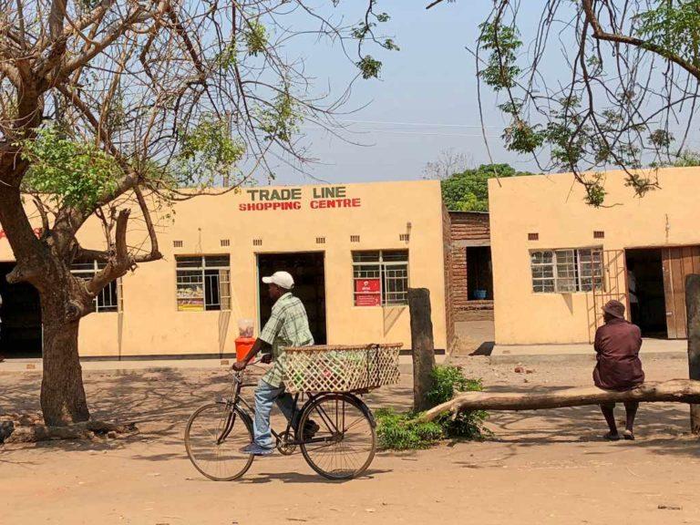 Zambie 37