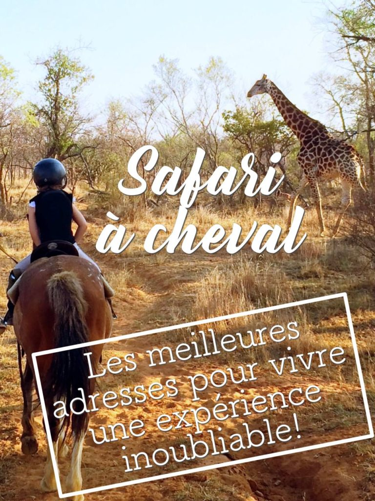 Safari à cheval