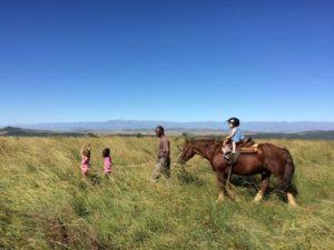 Safari à cheval