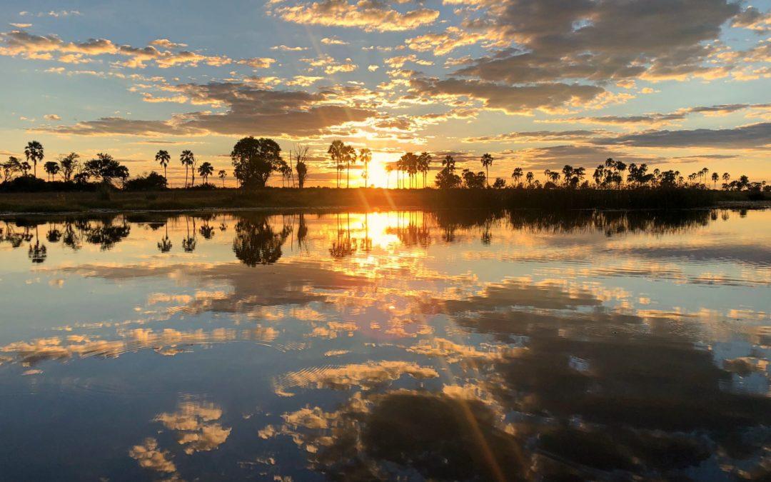Luxe ou budget? 5 manières de visiter le Botswana