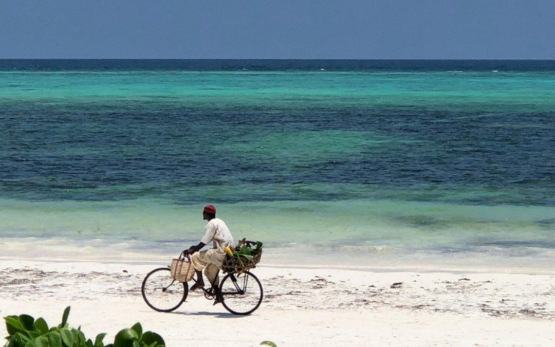 Zanzibar, le Guide!