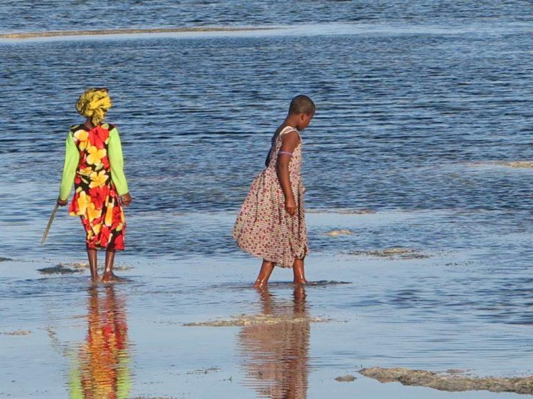 Guide Zanzibar