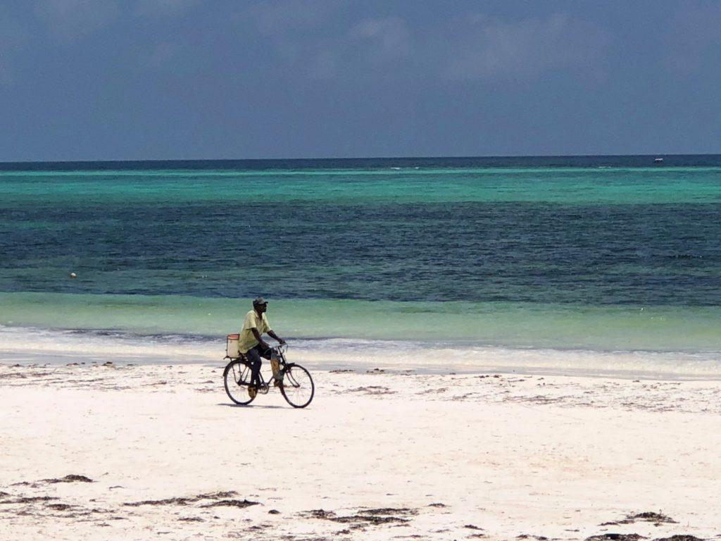 Zanzibar Logements