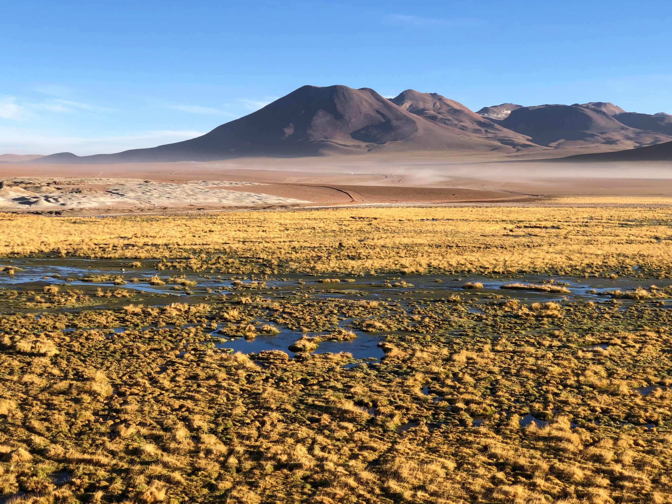 Désert d'Atacama, Chili : Le Guide!