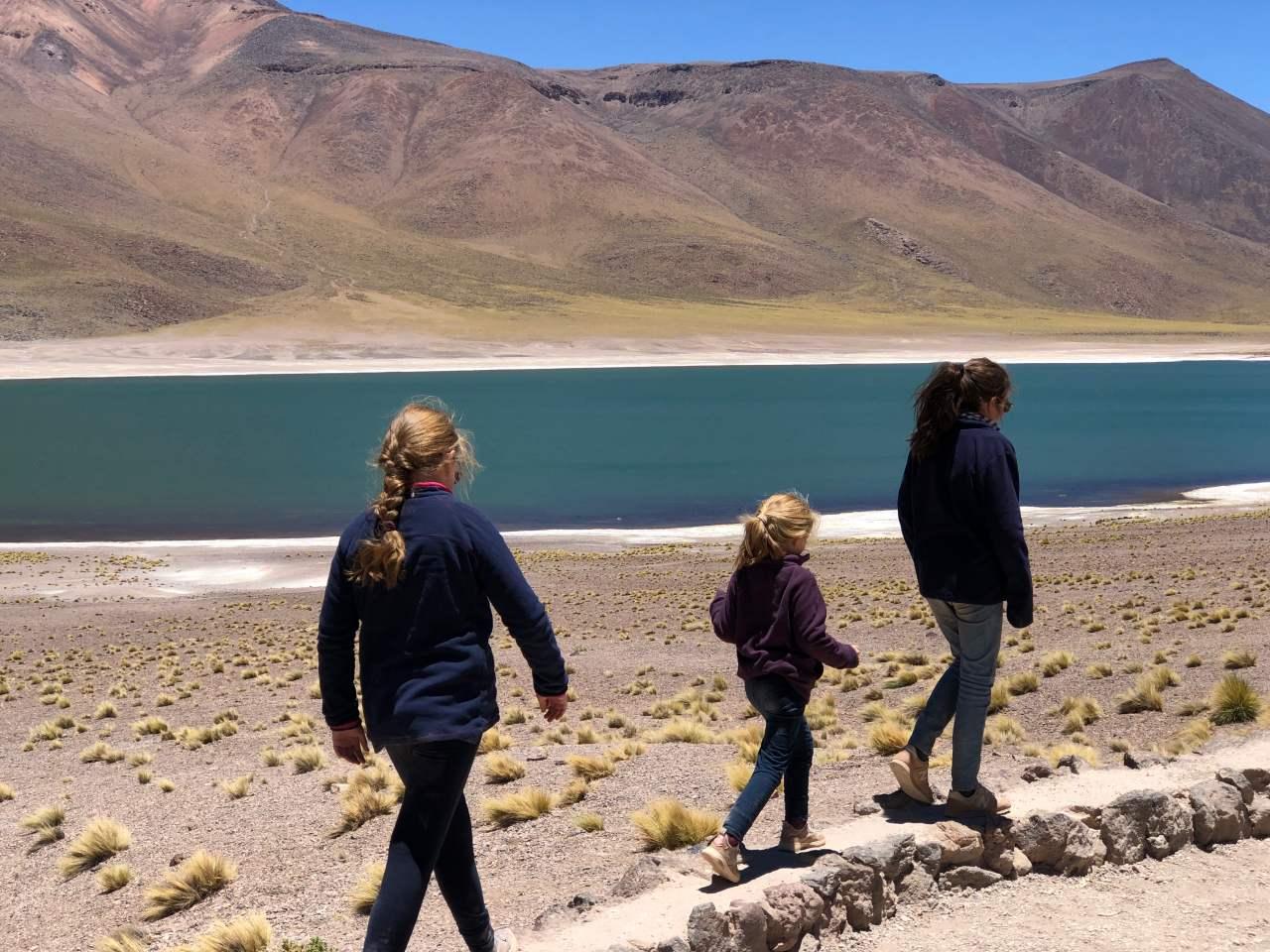 Tierra Atacama 50